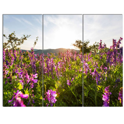 Designart Amazing Summer Pasture With Flowers Floral Canvas Art Print - 3 Panels