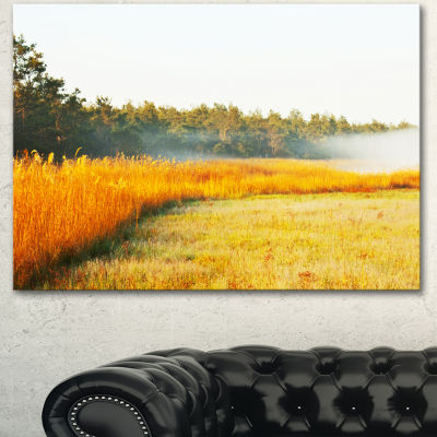 Designart Amazing Yellow Mountain Meadow Extra Large Landscape Canvas Art