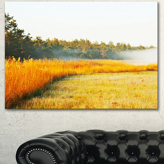 Designart Amazing Yellow Mountain Meadow Extra Large Landscape Canvas Art