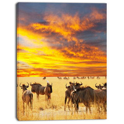 Designart Antelope Crowd At Sunset African CanvasArt Print