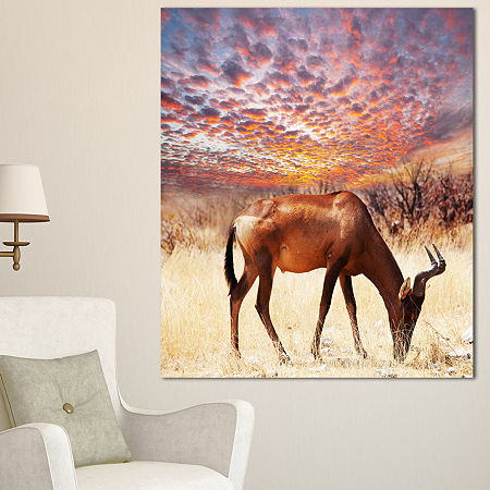 Designart Antelope In Bush Under Dramatic Sky African Landscape Canvas Art Print, One Size , Brown