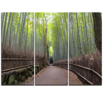 Designart Arashiyama Bamboo Path Japan Forest Triptych Canvas Wall Art Print