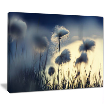 Designart Arctic Blooming Cotton Flowers Large Flower Canvas Wall Art