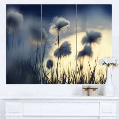 Designart Arctic Blooming Cotton Flowers Large Flower Canvas Wall Art - 3 Panels