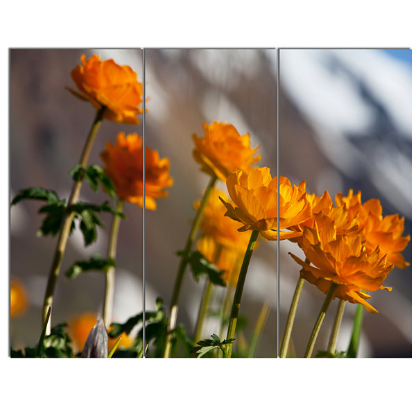 Designart Attractive Small Yellow Flowers Large Flower Canvas Wall Art - 3 Panels