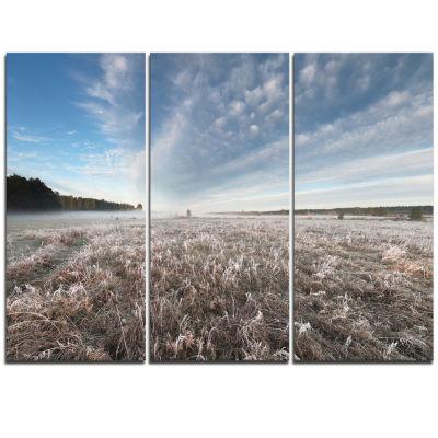 Designart Autumn Hoarfrost On Grass Landscape Print Wall Artwork
