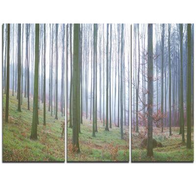 Designart Autumn Tree Trunks Panorama Oversized Forest Triptych Canvas Artwork