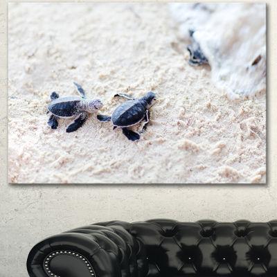 Designart Baby Green Turtles On Sand Oversized Animal Wall Art