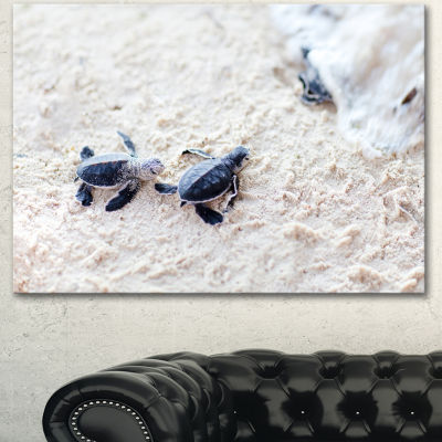 Designart Baby Green Turtles On Sand Oversized Animal Wall Art - 3 Panels