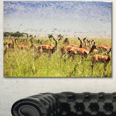 Designart Beautiful Antelope In Grass African Landscape Canvas Art Print - 3 Panels