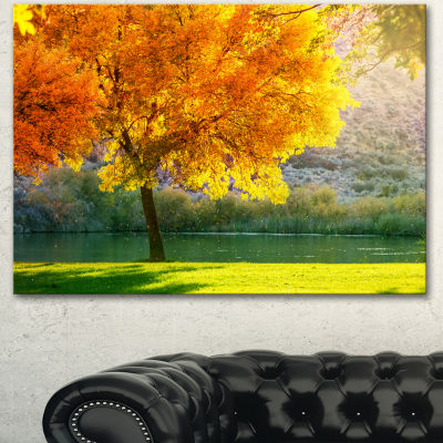 Designart Beautiful Autumn Season In Forest ExtraLarge Landscape Canvas Art