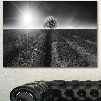 Designart Beautiful Black White Lavender Field Extra Large Landscape Canvas Art Color White Jcpenney