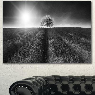 Designart Beautiful Black White Lavender Field Extra Large Landscape Canvas Art - 3 Panels