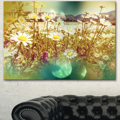 Designart Beautiful Blossom Chamomile Flowers Floral Canvas Art Print - 3 Panels