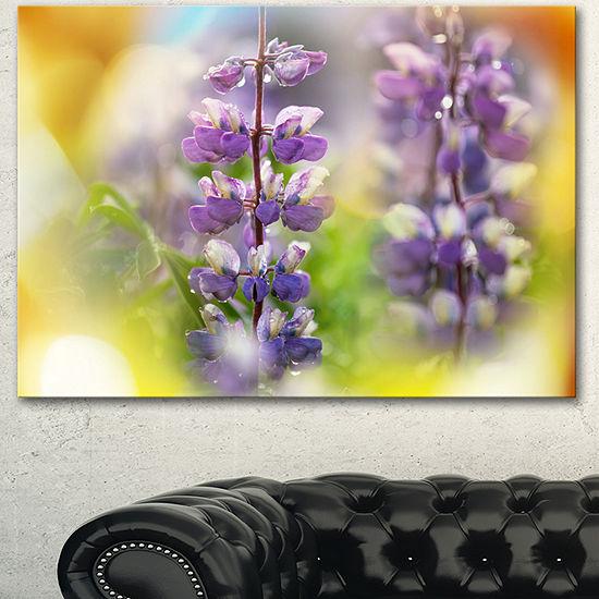 Designart Beautiful Blue Lupin Flowers Large Flower Canvas Art Print