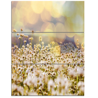 Designart Beautiful Chamomiles Field Oversized Landscape Canvas Art - 3 Panels