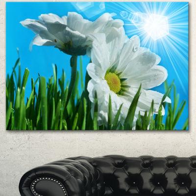 Designart Beautiful Chamomiles In Bright SunlightFloral Canvas Art Print - 3 Panels