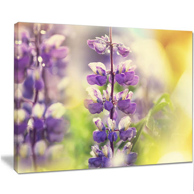 Designart Beautiful Close Up Of Blue Lupin FlowersLarge Flower Canvas Art Print
