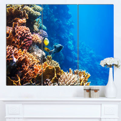 Designart Beautiful Coral Fish Of Red Sea SeashoreCanvas Art Print - 3 Panels