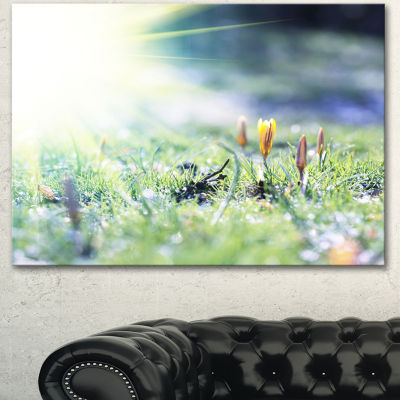 Designart Beautiful First Spring Flowers At Dawn Floral Canvas Art Print - 3 Panels