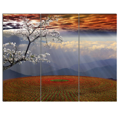 Designart Beautiful Flower Field At Sunset Extra Large Landscape Canvas Art - 3 Panels
