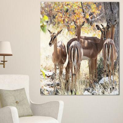 Designart Beautiful Herd Of Antelope Gnu Extra Large African Canvas Art Print - 3 Panels