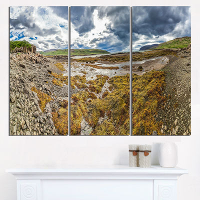Designart Beautiful Iceland Coast Panorama Landscape Print Wall Artwork