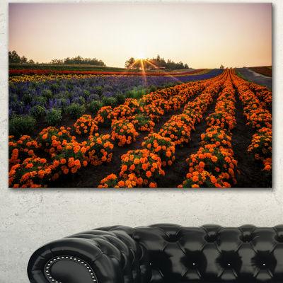 Designart Beautiful Japanese Flower Farm Floral Canvas Art Print - 3 Panels