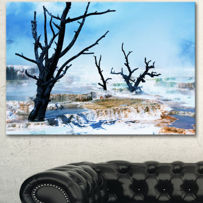 Designart Beautiful Land With Large Dry Trees Extra Large Landscape Canvas Art