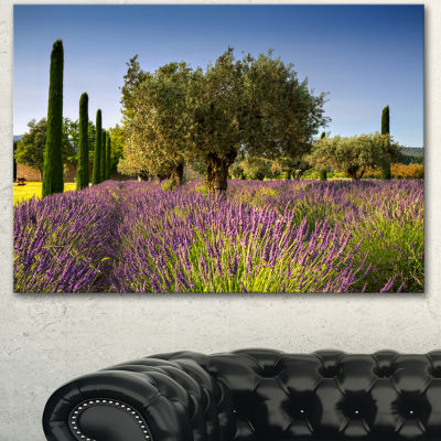 Designart Beautiful Lavender And Olive Trees LargeFlower Canvas Wall Art - 3 Panels