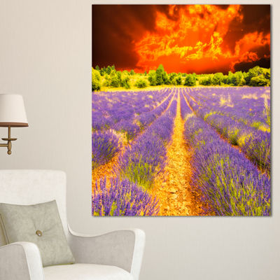 Designart Beautiful Lavender Field And Sunset Floral Canvas Art Print