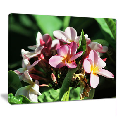 Designart Beautiful Little Pink White Flowers Floral Art Canvas Print