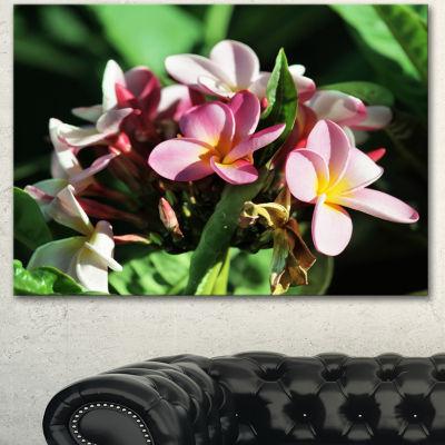Designart Beautiful Little Pink White Flowers Floral Art Canvas Print - 3 Panels