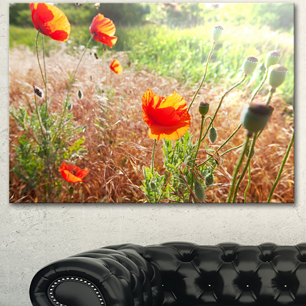 Design Art Beautiful Morning View Of Poppies FloralCanvas Art Print