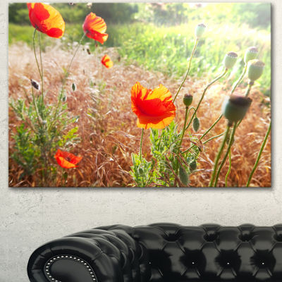 Designart Beautiful Morning View Of Poppies FloralCanvas Art Print