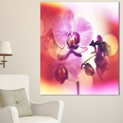 Designart Beautiful Pink Orchid Flowers Large Flower Canvas Wall Art