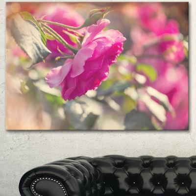 Designart Beautiful Pink Rose Flowers Floral Canvas Art Print - 3 Panels