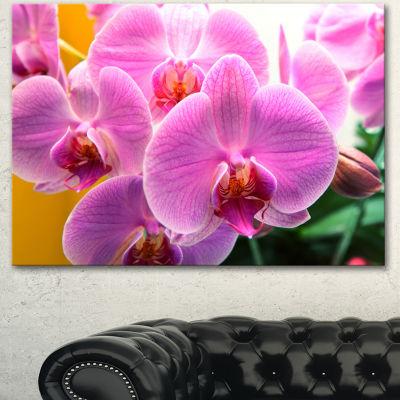 Designart Beautiful Purple Orchid Flowers Large Flower Canvas Art Print - 3 Panels