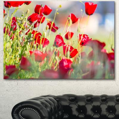 Designart Beautiful Red Poppy Flowers View FloralCanvas Art Print