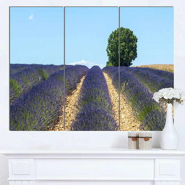 Designart Beautiful Rows Of Lavender In France Landscape Canvas Wall Art - 3 Panels