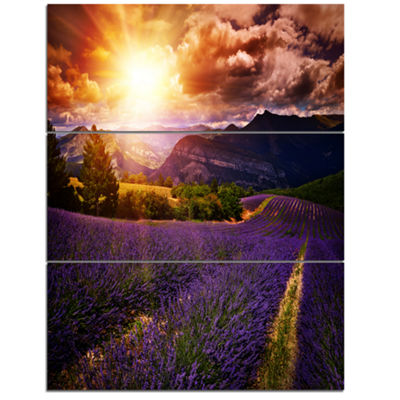 Designart Beautiful Sunset Over Lavender Field Floral Canvas Art Print - 3 Panels