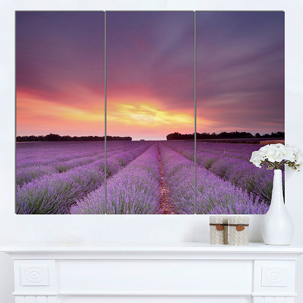 Design Art Beautiful Sunset Over Lavender Rows Landscape Canvas Wall Art - 3 Panels