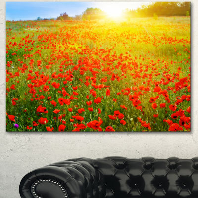 Designart Beautiful Sunshine Over Poppy Fields Floral Canvas Art Print - 3 Panels