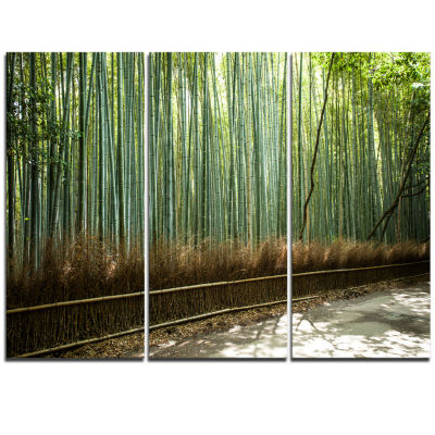 Designart Beautiful View Of Bamboo Forest ForestTriptych Canvas Wall Art Print