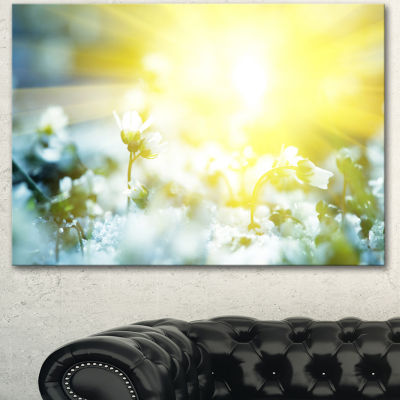 Designart Beautiful White Flowers At Sunrise LargeFlower Canvas Wall Art - 3 Panels