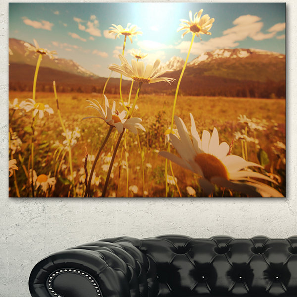 Design Art Blooming Chamomiles In Meadow Large Flower Canvas Wall Art - 3 Panels