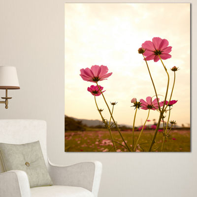 Designart Blooming Cosmos Flower Field Floral Canvas Art Print
