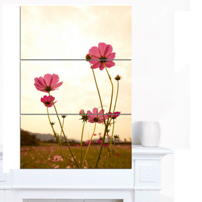 Designart Blooming Cosmos Flower Field Floral Canvas Art Print - 3 Panels