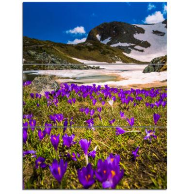 Designart Blooming Crocus Flowers In Rila Mountains Landscape Triptych Canvas Art Print