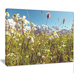 Designart Blooming Mountain Meadow Flowers Large Flower Canvas Art Print